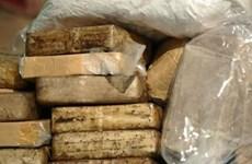 LHQ và các nước Mekong hợp tác đấu tranh chống tội phạm ma túy