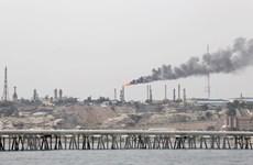 Giá dầu giảm khi dự trữ dầu thô của Mỹ bất ngờ tăng