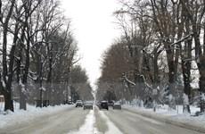 Mỹ: Bão tuyết khiến 1.000 người bị mắc kẹt tại bang Arizona