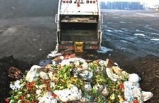Người Anh lãng phí 4,2 triệu tấn thực phẩm mỗi năm