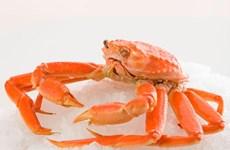 Tháng Liên hoan ẩm thực Canada sắp diễn ra tại Hà Nội