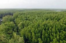 Việt Nam tổ chức Festival rừng đầu tiên vào cuối 2014