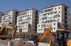 Israel phê chuẩn kế hoạch xây nhà tái định cư mới