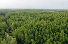 EU tài trợ 3 triệu euro giúp đỡ Việt Nam bảo vệ rừng