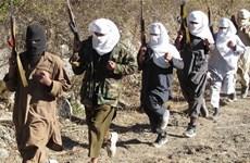 Pakistan hối Taliban chấm dứt tấn công vô điều kiện