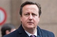 Cử tri Anh ủng hộ chính đảng có xu hướng phản đối EU