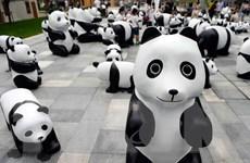 [Photo] Trung Quốc tổ chức triển lãm gấu trúc làm từ tre
