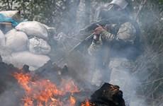 Nga cáo buộc Kiev dùng bom napan trong các trận đánh ở miền Đông