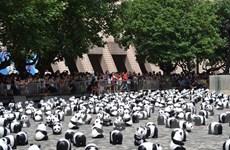 1.600 chú gấu trúc giấy du ngoạn trên khắp Hong Kong