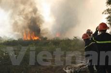 Thừa Thiên-Huế: Cháy khoảng 10ha rừng tại vùng cát Quảng Điền