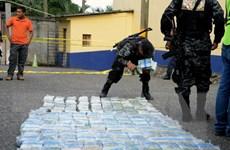 Bulgaria triệt phá đường dây tội phạm ma túy xuyên quốc gia