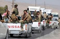 Quốc hội Italy chấp thuận hỗ trợ vũ khí cho người Kurd ở Iraq