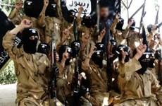 Syria tiêu diệt 140 chiến binh Nhà nước Hồi giáo tự xưng