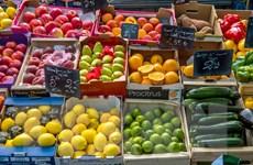 Ukraine thiệt hại nặng do lệnh cấm nhập khẩu rau quả của Nga