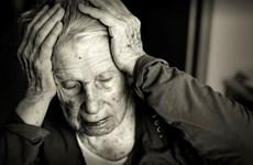 Vitamin B12 và axít folic không giúp giảm nguy cơ mất trí nhớ