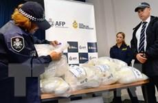 New Zealand tịch thu lượng ma túy lớn thứ hai trong lịch sử