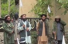 Nhiều cựu thủ lĩnh Taliban tại Pakistan tuyên bố gia nhập IS
