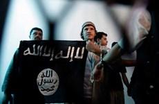 Al-Qaeda tại Yemen nhận tổ chức vụ tấn công Charlie Hebdo