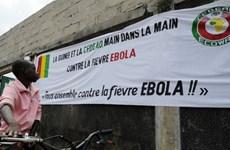 Dịch Ebola không ảnh hưởng đến kế hoạch tổ chức CAN 2015