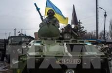 Ukraine: Phe ly khai huy động 100.000 chiến binh chống Kiev