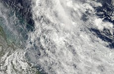 Australia hứng chịu liên tiếp hai trận bão mạnh Marcia và Lam