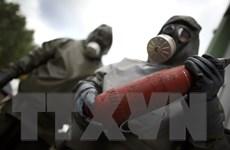 Syria có nguy cơ bị trừng phạt do cáo buộc tấn công bằng khí Clo