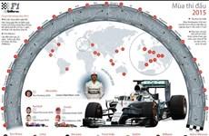 [Infographics] Điểm qua những nét chính của mùa giải F1 2015