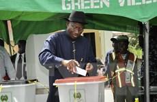 Ủy ban bầu cử Nigeria bắt đầu điều tra các cáo buộc gian lận
