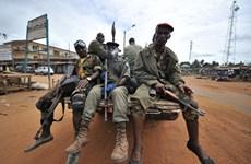 Liên hợp quốc cấm các nước cung cấp vũ khí cho Côte d'Ivoire