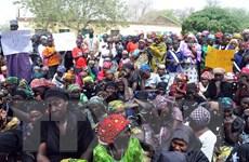 Quân đội Nigeria giải cứu gần 300 người từ tay Boko Haram