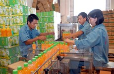 Nâng cao khả năng hội nhập cho doanh nghiệp SME tại APEC
