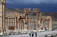 SOHR: IS đã kiểm soát nhiều khu vực ở thành phố Palmyra