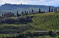 Italy bùng nổ hình thức du lịch trang trại tại vùng nông thôn
