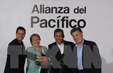"""""""Tứ hổ của Mỹ Latinh"""" đẩy mạnh hội nhập và hợp tác khu vực"""