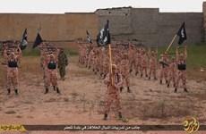 IS mua đất tại Bosnia-Herzegovina lập căn cứ huấn luyện chiến binh