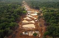 Guyana khai thác vàng tại khu vực tranh chấp với Venezuela