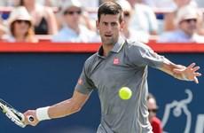 Giải quần vợt Cincinnati 2015: Djokovic, Serena Williams thẳng tiến