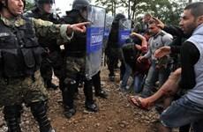 Macedonia dùng hơi cay đẩy lui người nhập cư gốc Bắc Phi và Trung Đông