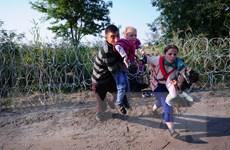 Croatia triệu tập họp Hội đồng An ninh quốc gia bàn vấn đề di cư