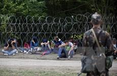Khủng hoảng di cư: Châu Âu đang trong thế tiến thoái lưỡng nan