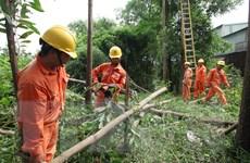 Hà Nội lên phương án đảm bảo an toàn lưới điện mùa mưa bão