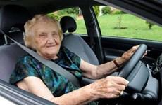 Italy triển khai dự án lái xe an toàn cho các cụ già trên 65 tuổi