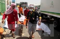 Iran chỉ trích Saudi Arabia về vụ giẫm đạp tại Thánh địa Mecca