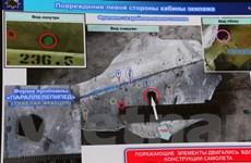 Hà Lan hối thúc Nga hợp tác trong cuộc điều tra hình sự vụ MH17