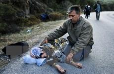 Tổng thống Bulgaria xin lỗi vụ lính biên phòng bắn người tị nạn