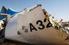 Tổng thống Mỹ: Máy bay Nga rơi ở Ai Cập có khả năng bị đặt bom