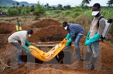 WHO xác nhận Liberia lại xuất hiện ca mắc virus Ebola mới