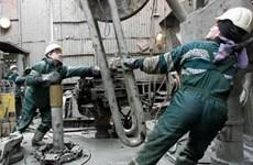 Sản lượng dầu của Nga có thể giảm 1 triệu thùng mỗi ngày