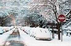 Mỹ: Thêm một cơn bão tuyết lớn đổ bộ vào vùng Đông Bắc