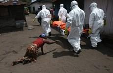 Các nước Tây Phi kêu gọi quốc tế viện trợ sau đại dịch Ebola